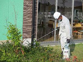 メンテナンス部 環境衛生管理業務 植栽害虫防除